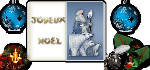 livre-or-noel-2014.png